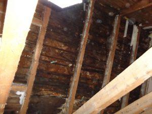 morsche Dachschalung in Wohnhaus