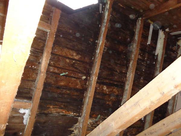 Dachschalung verfault, Energieberatung, Effizienzhaus, Luftdichtheitsmessung